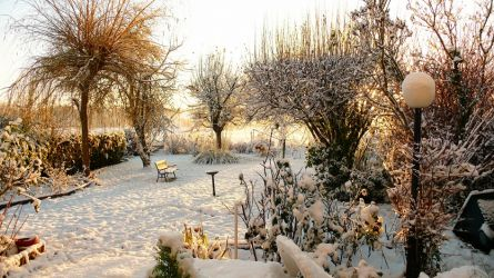 Lassy dans le Val d'Oise sous la neige - 2010